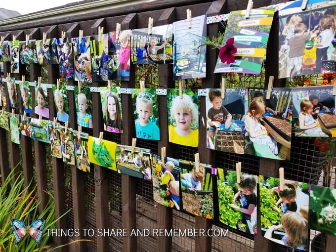 outdoor photo display clips on ribbon
