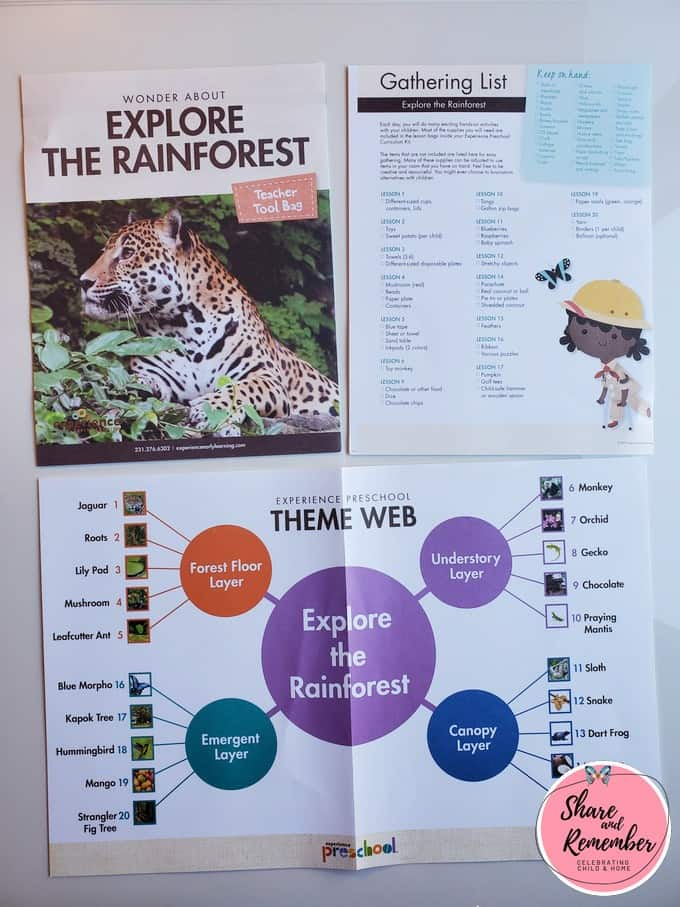 What's in the box Rainforest preschool theme