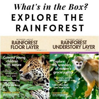 What's in the Box Explore the Rainforest Featured