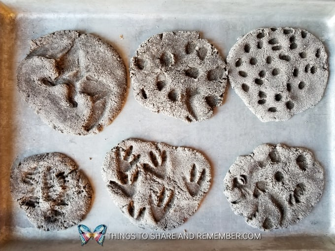 Dinosaur Fossil Clay Recipe 187 Share Amp Remember