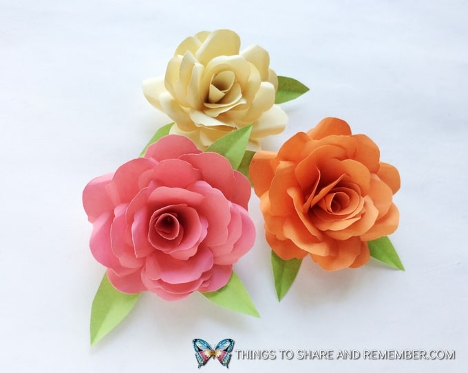 paper roses completed