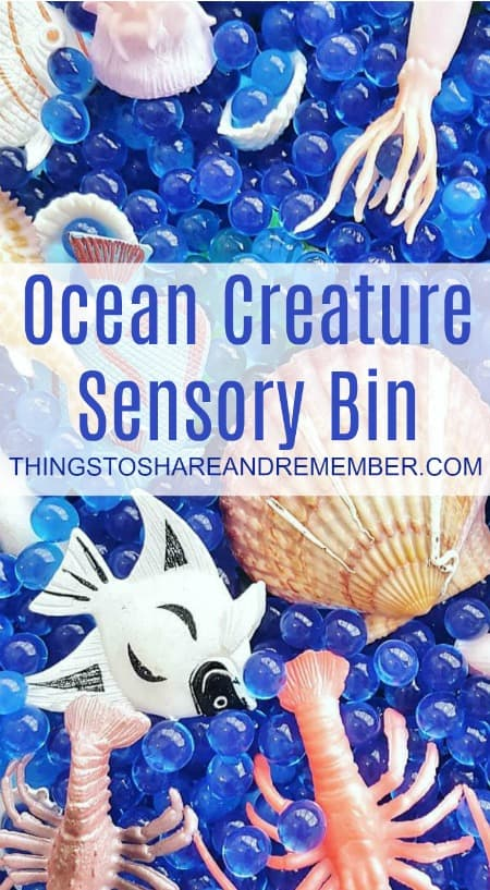 Create an Ocean Creature Sensory Bin for Preschool Ocean Theme