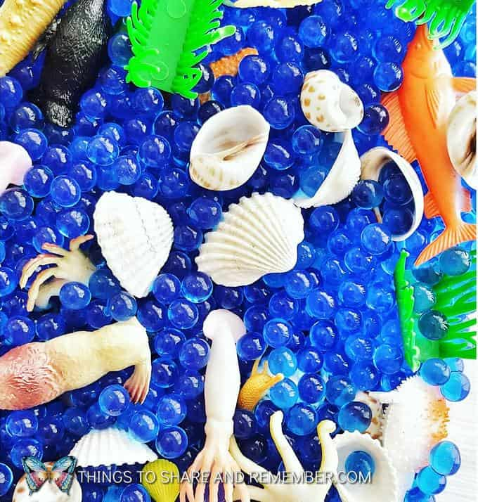 Create an Ocean Creature Sensory Bin