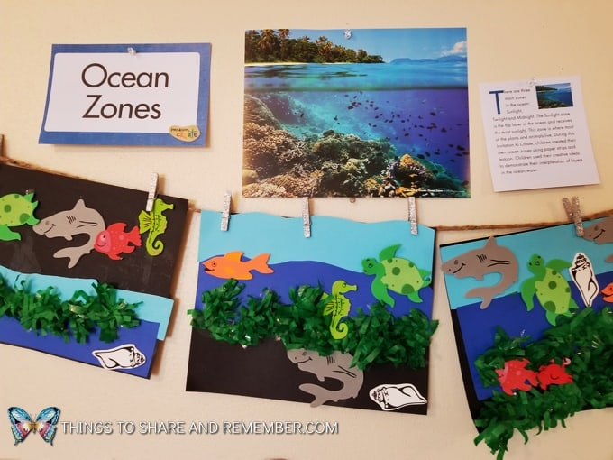 Ocean Zones creative art