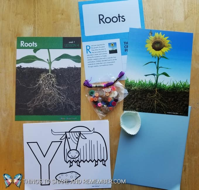 roots What's in the Box? Growing Gardens Preschool Theme