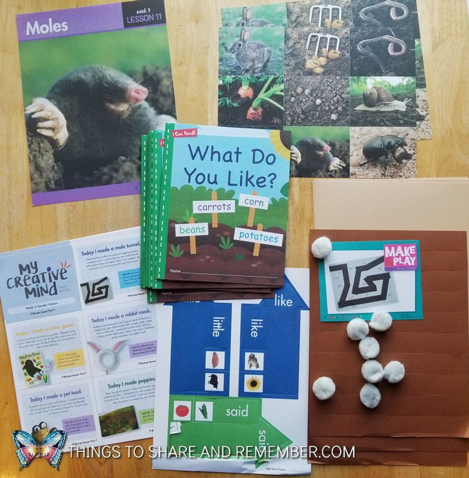 What's in the Box? Growing Gardens Preschool Theme moles