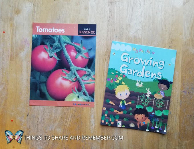 What's in the Box? Growing Gardens Preschool Theme tomatoes