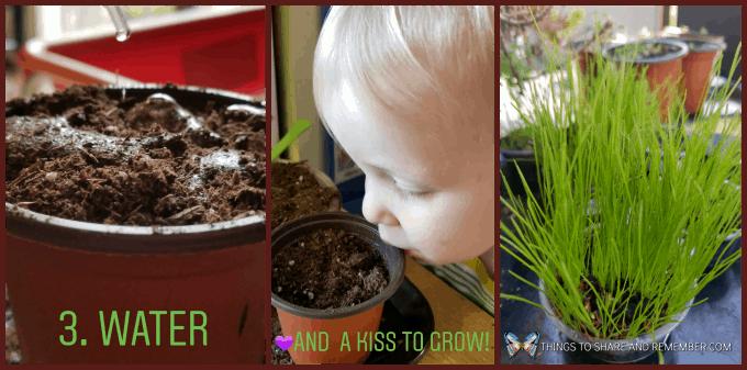 Planting Seeds In Preschool