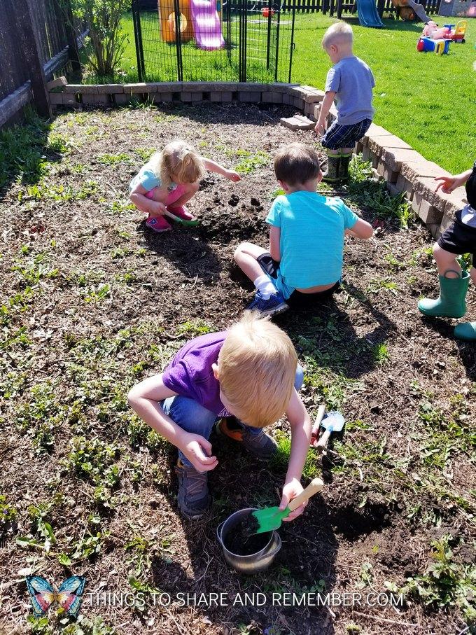 preschoolers digging in the garden soil