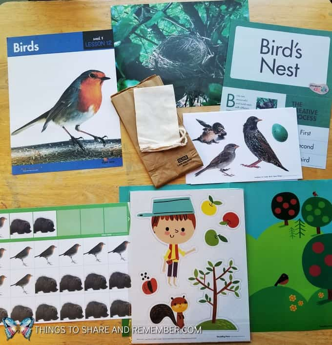 Lesson 12 Mother Goose Time Preschool Curriculum Orchard Harvest fall theme Birds and Bird nest creative art
