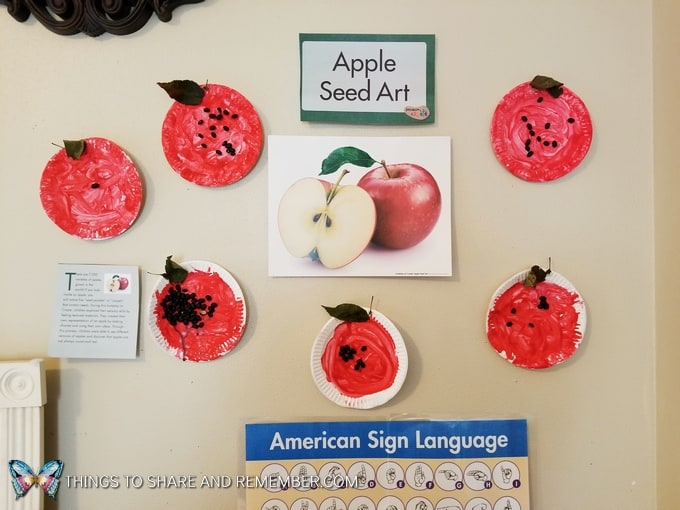 Apple Seed Art display in classroom