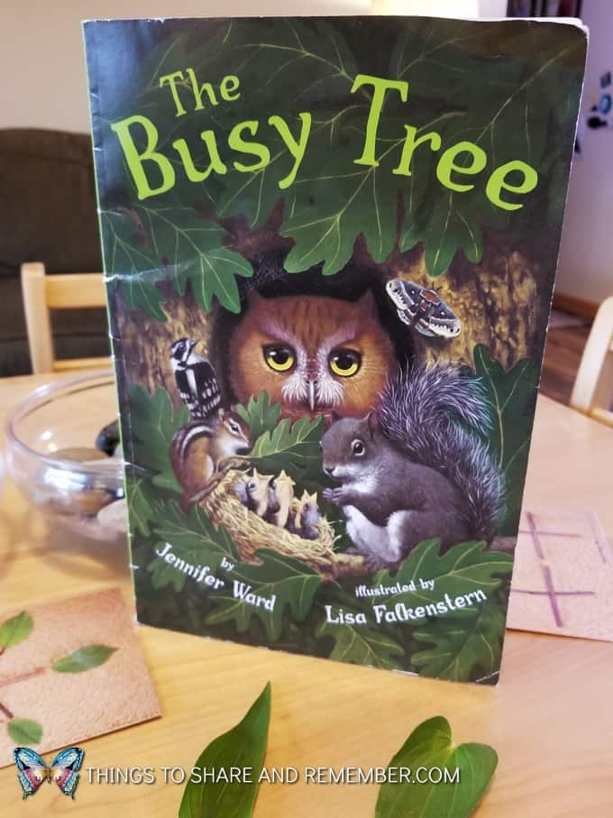 Busy Tree book about trees