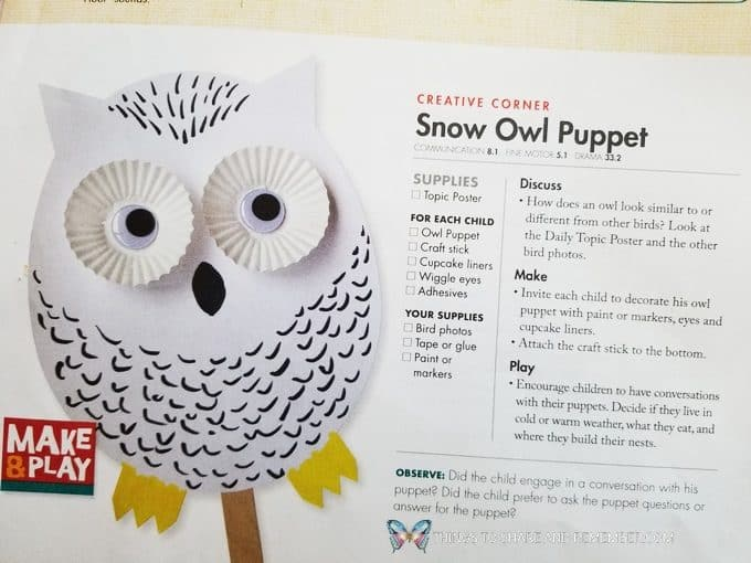 Snowy Owl Puppet Teacher Guide