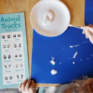 Tracks in the snow preschool activities #MGTblogger