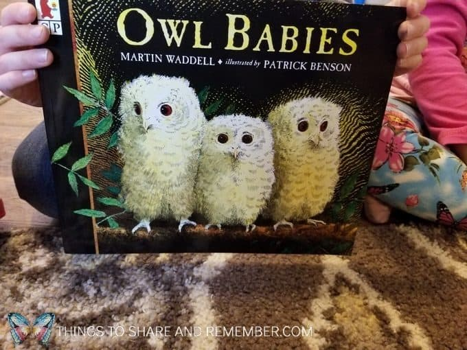 Story time book Owl Babies by Martin Waddell for preschool sights and sounds of winter theme