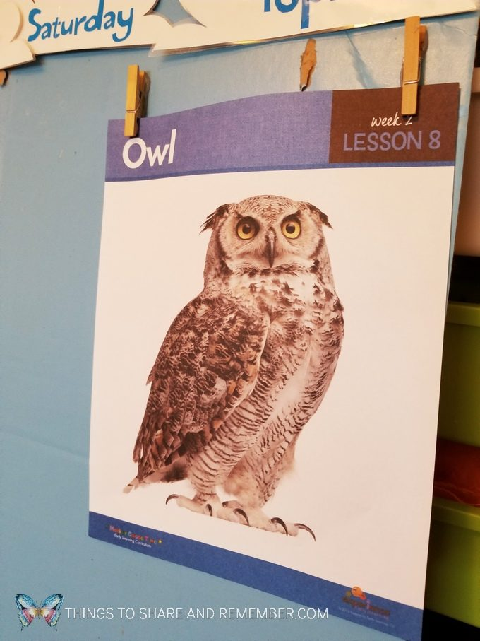 Hear the Owl? lesson from Mother Goose Time Sights and Sounds of winter preschool curriculum Daily topic sheet featuring an owl #preschool #MotherGooseTime #MGTblogger #SightsandSounds