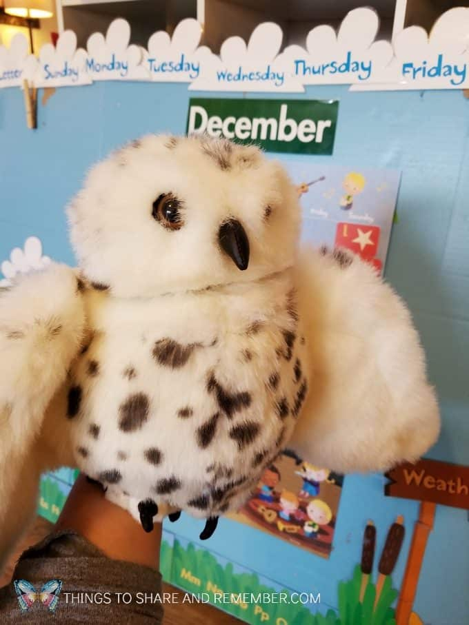 Owl puppet for owl preschool lessons winter theme Sights and Sounds #MGTblogger #MotherGooseTime #SightsandSounds