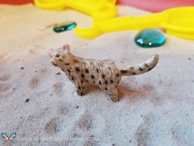 Animal tracks in the snow sand sensory play with animals and sand #MGTblogger #MotherGooseTime #preschool #sensory #sand #SightsandSounds