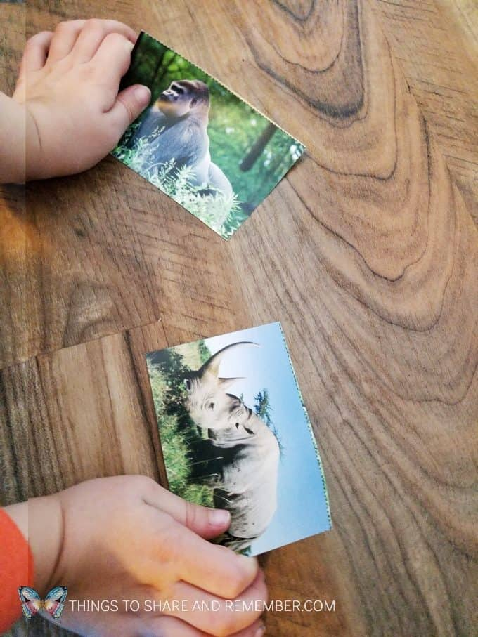 Safari animals matching cards Going on Safari preschool theme binoculars craft and related activities for preschoolers #MGTBlogger #MotherGooseTime #preschool #preschoolcurriculum #GoingOnSafari #safaritheme