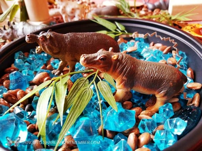 Hippos in the watering hole - Safari Habitat Sensory bin with animals for preschoolers Going on Safari theme from Mother Goose Time preschool curriculum #MGTblogger #MotherGooseTime #preschool #GoingonSafari #sensorybin #sensoryplay #smallworld #invitationtoplay