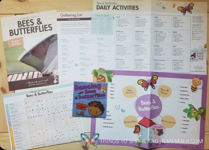 Bees and Butterflies Teacher materials