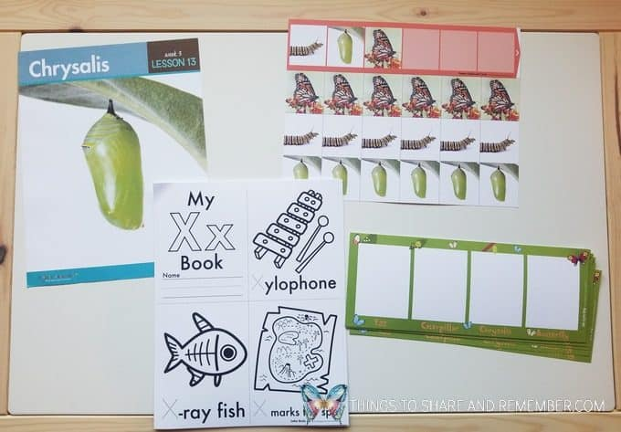 bees and butterflies theme Lesson 13 Chrysalis pattern cards and letter x letter books
