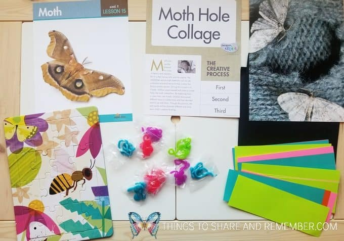 bees and butterflies theme lesson 15: moth bee and butterfly puzzle, moth hole collage art project