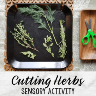 Cutting Herbs Sensory Activity Exploring Herbs STEAM Station