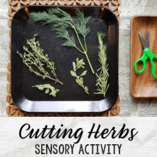 Cutting Herbs Sensory Activity Exploring Herbs STEAM Station