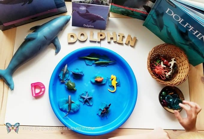 D is for dolphin sensory play tray