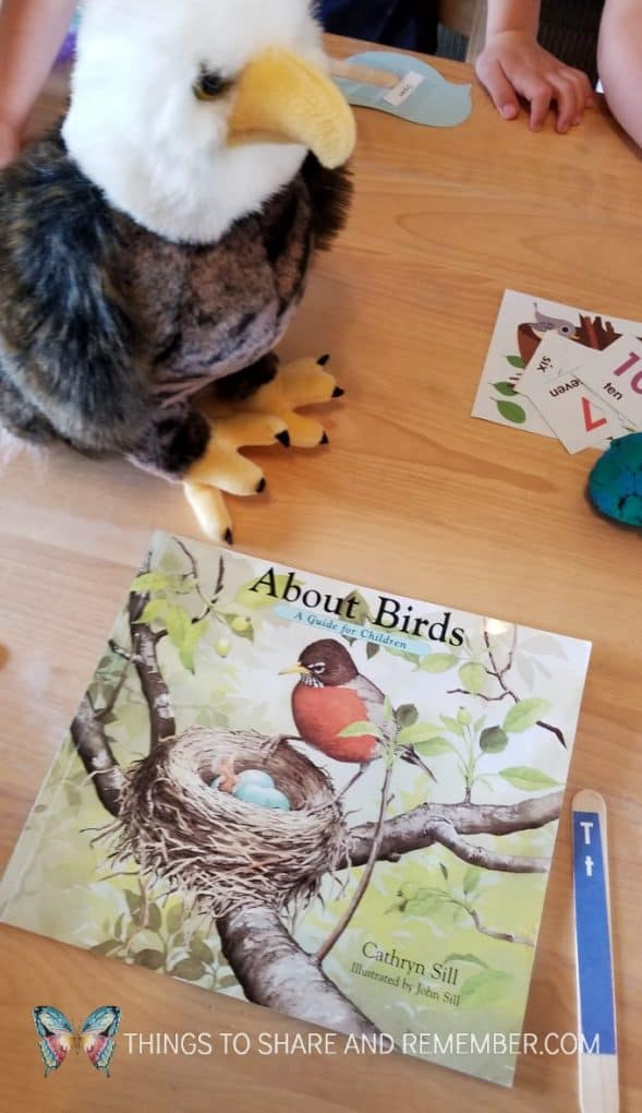 Eagle stuffed animal and About Birds book