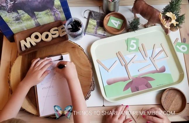 preschool M is for Moose activities
