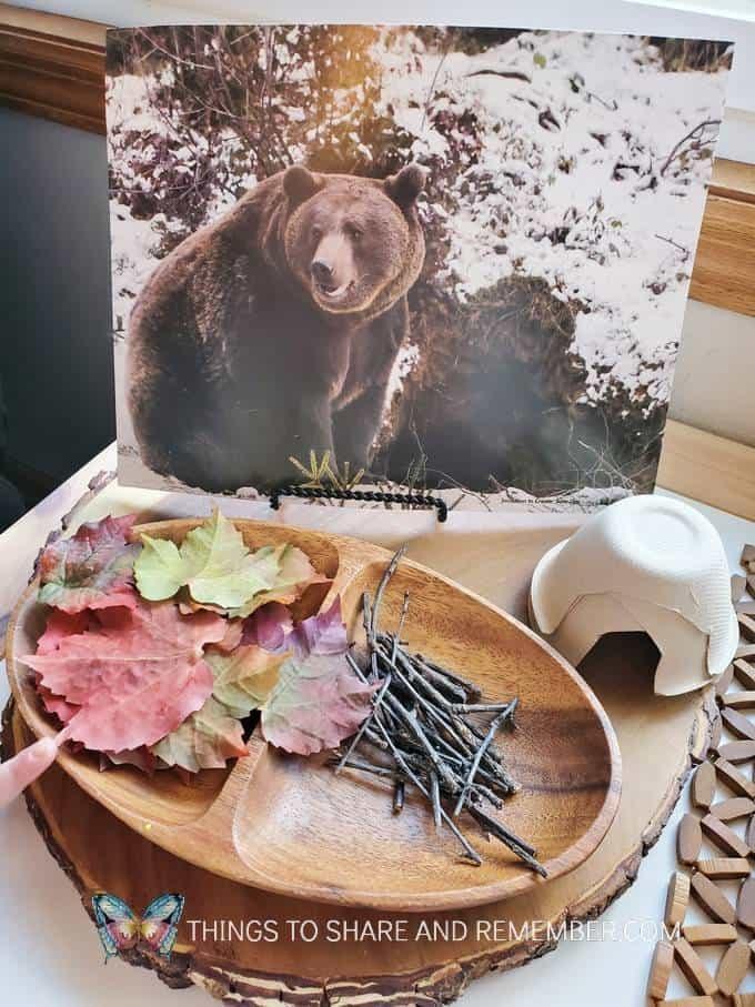 B is for Bear Den Bear Den Materials