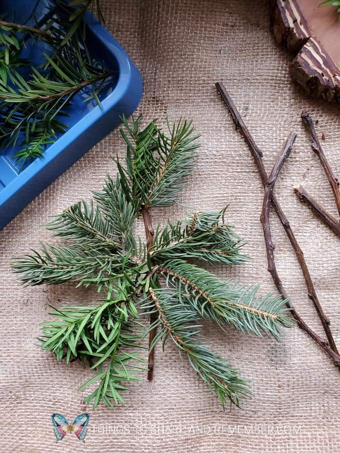 make a pine tree natural loose parts