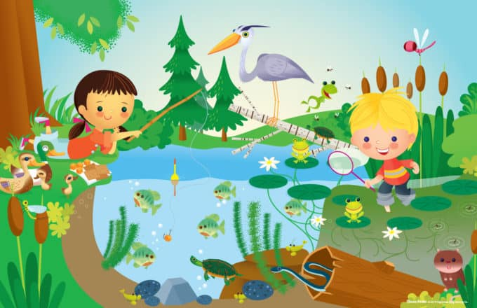 Pond Life Experience Early Learning preschool curriculum