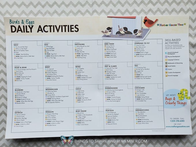 Experience Preschool Daily Activities calendar What's in the Box? Birds & Eggs