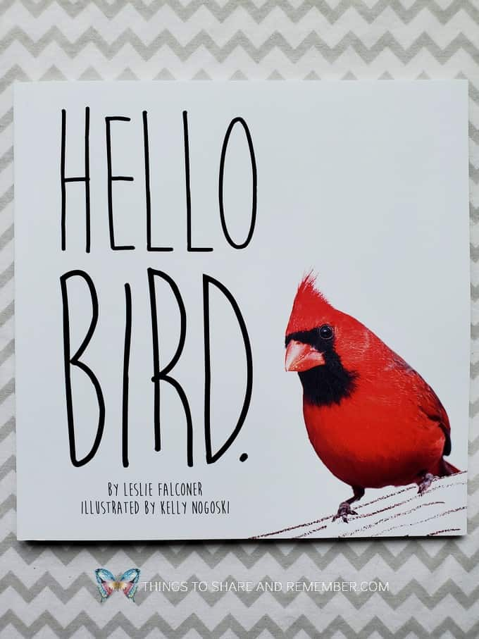 Hello Bird book from Experience Curriculum