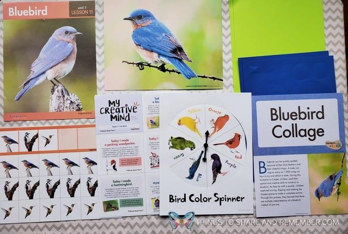 Lesson 11: Bluebird