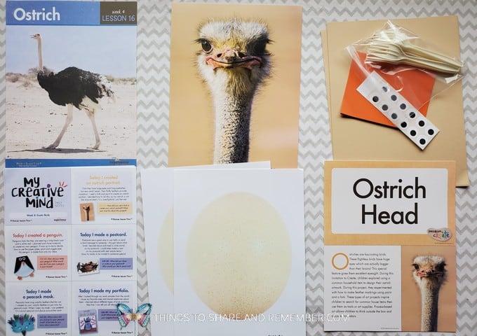 Lesson 16: Ostrich