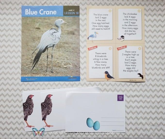 Lesson 18: Blue Crane