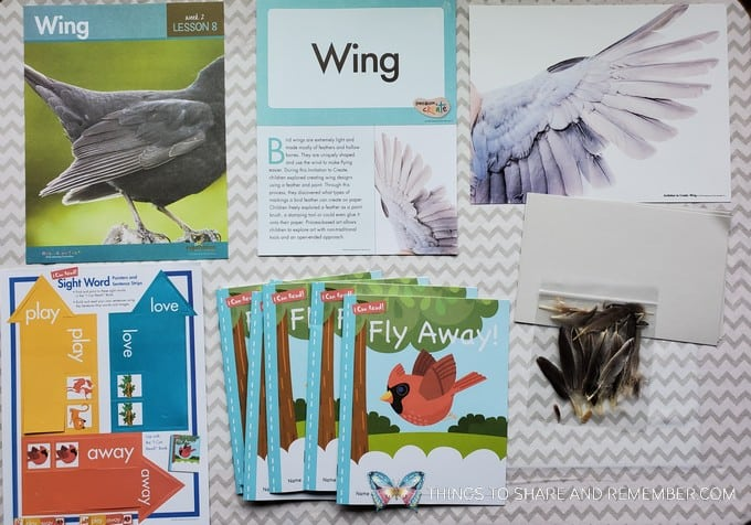 Lesson 8: Wing