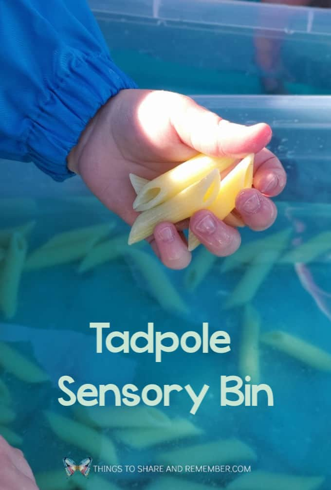 Tadpole Sensory Bin made with penne noodles in water for Pond theme in preschool