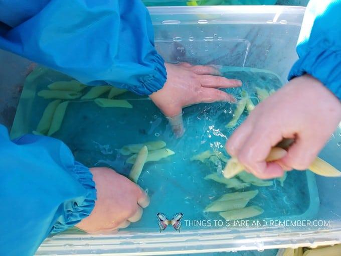 Tadpole Sensory Bin water play