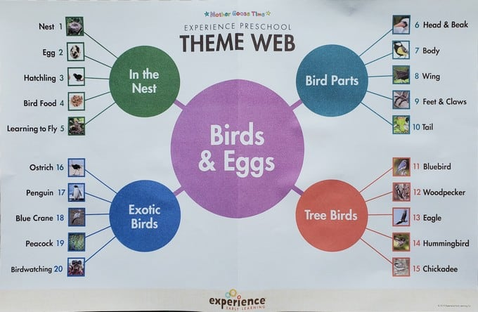 What's in the Box? Birds & Eggs theme web Experience Preschool