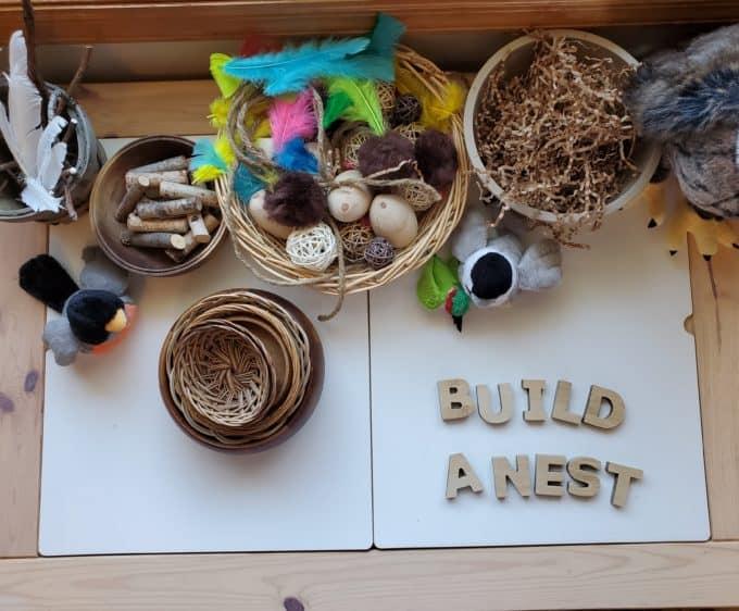 Build a nest STEAM Station table preschool activity