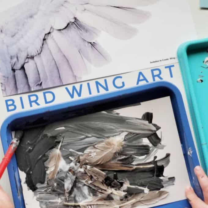 Bird Wing Art from Experience Preschool curriculum Birds & Eggs Theme