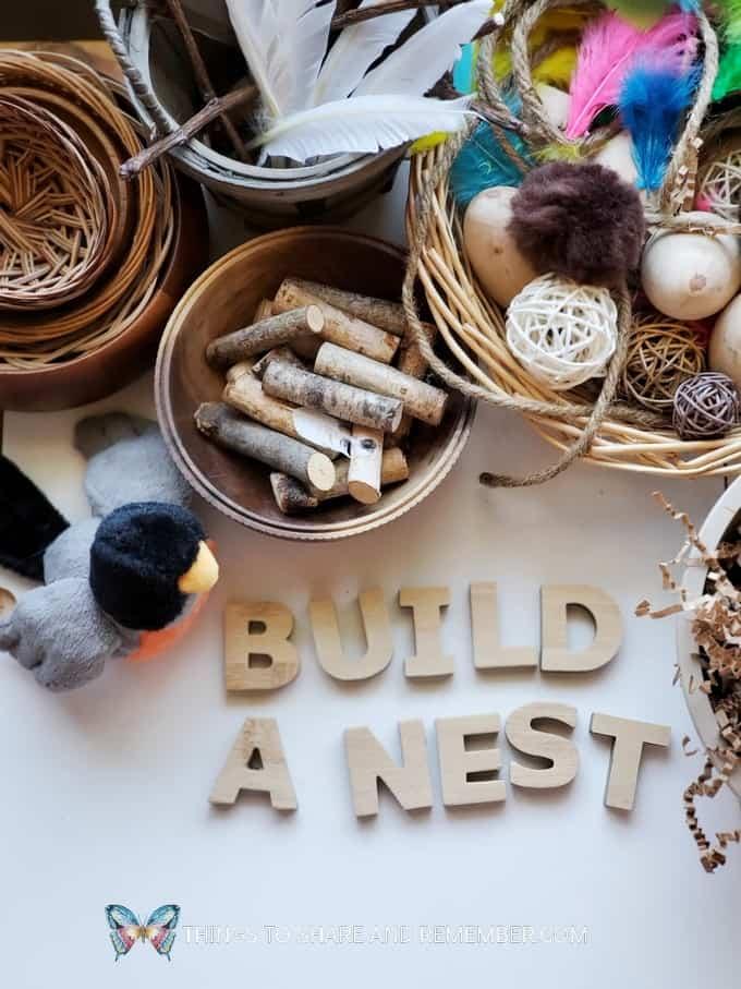 Build a Nest Nest Making activity for preschoolers