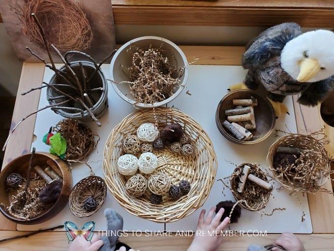Build a Bird Nest Preschool Activity natural materials