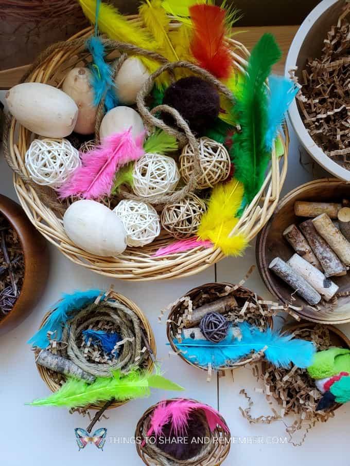 Build a Bird Nest Preschool Activity