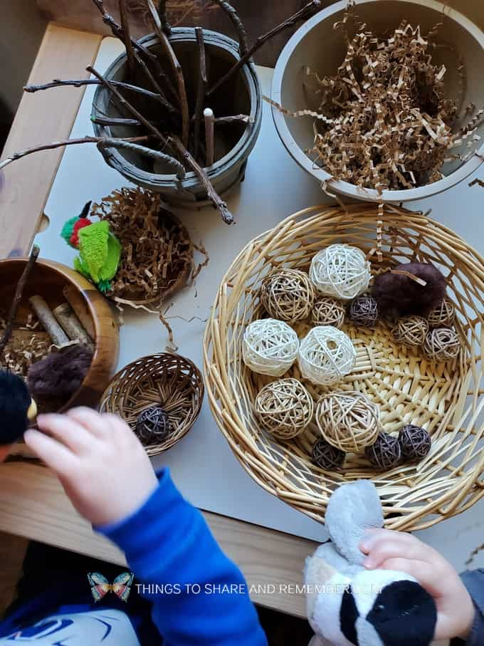 Build a Bird Nest Preschool Activity